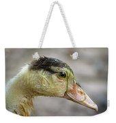 Duck 11 Weekender Tote Bag