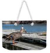 Duck About To Jump. Weekender Tote Bag