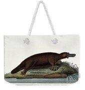 Duck-billed Platypus Ornithorhynchus Weekender Tote Bag