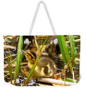 Ducklings 1 Weekender Tote Bag