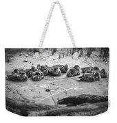 Ducklings Siblings - Grayscale Weekender Tote Bag