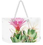 Dumpling Cactus Weekender Tote Bag