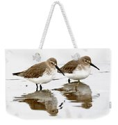 Dunlin Seeing Double Weekender Tote Bag