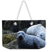 Dunvegan Loch With A Group Of Harbor Seals Weekender Tote Bag