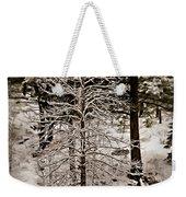 Dusk In The Sierras Weekender Tote Bag