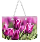 Dutch Tulips 2016 - Part One Weekender Tote Bag