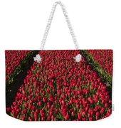 Dutch Tulips Second Shoot Of 2015 Part 1 Weekender Tote Bag