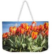 Dutch Tulips Second Shoot Of 2015 Part 3 Weekender Tote Bag