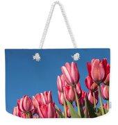 Dutch Tulips Second Shoot Of 2015 Part 8 Weekender Tote Bag