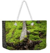 Dying Tree In The Forest Weekender Tote Bag