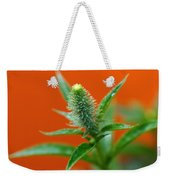 Eager For Orange Weekender Tote Bag