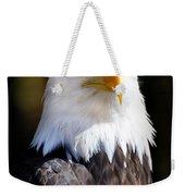 Eagle 23 Weekender Tote Bag