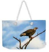 Eagle And Blue Sky Weekender Tote Bag