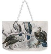 Eagle Birds Print Weekender Tote Bag