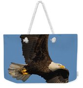 Eagle In Sunlight Weekender Tote Bag