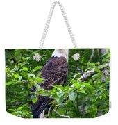Eagle In Tree Weekender Tote Bag