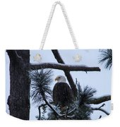 Eagle On A Frosted Limb Weekender Tote Bag