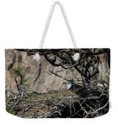 Eagle On The Nest, No. 3 Weekender Tote Bag
