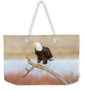 Eagle Overlooking Colorado River Weekender Tote Bag