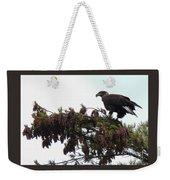 Eaglet In Pines Weekender Tote Bag