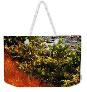 Early Autumn Along The Naugatuck Weekender Tote Bag