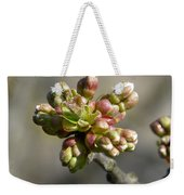 Early Cherry Blossom Weekender Tote Bag