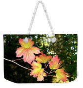 Early Days Of Autumn Weekender Tote Bag