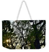Early Evening Sunset Through The Trees Weekender Tote Bag