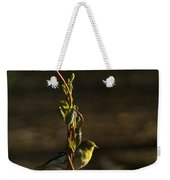 Early Morning For American Golden Finch Weekender Tote Bag