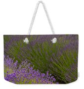 Early Morning Lavender Weekender Tote Bag