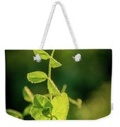 Early Morning Stretch Weekender Tote Bag