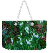 Early Spring Weekender Tote Bag