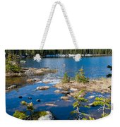 Early Summer At Finch Lake Weekender Tote Bag