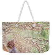 Earth Art 9499 Weekender Tote Bag