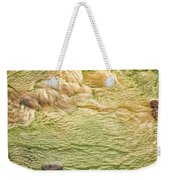 Earth Art 9509 Weekender Tote Bag
