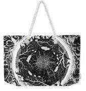 Earth: Cross-section, 1664 Weekender Tote Bag