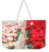East And West A Dutch Tulip Story Weekender Tote Bag