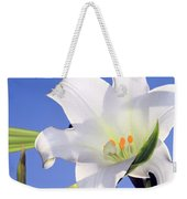 Easter Lily Back Lit By The Sun  Weekender Tote Bag