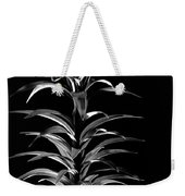 Easter Lily One Weekender Tote Bag