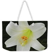 Easter Lily With Black Background Weekender Tote Bag
