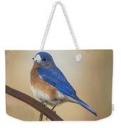 Eastern Blue Bird Male Weekender Tote Bag