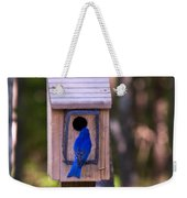 Eastern Bluebird Entering Home Weekender Tote Bag