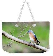 Eastern Bluebird Weekender Tote Bag by George Randy Bass