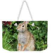 Eastern Cottontail Weekender Tote Bag