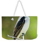 Eastern Kingbird Stare Weekender Tote Bag