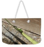 Eastern Pondhawk On A Leaf Weekender Tote Bag