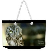 Eastern Screech Owl-6950 Weekender Tote Bag