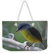 Eastern Yellow Robin Weekender Tote Bag