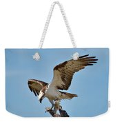 Eating Osprey-1 Weekender Tote Bag by Rudy Umans
