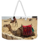 Egypt - Camel Getting Ready For The Ride Weekender Tote Bag